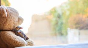 Ours de nounours à un filon-couche de fenêtre Photo libre de droits