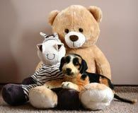 Ours de nounours avec des amis Image libre de droits