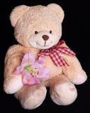 Ours de nounours avec la fleur de lis Photo stock