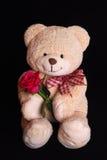 Ours de nounours avec la fleur rose de rouge Photographie stock