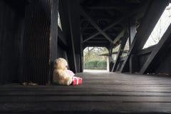 Ours de nounours avec le cadeau et le message Photos stock