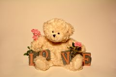 Ours de nounours blanc avec des pierres d'amour et roses Photographie stock