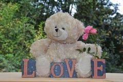 Ours de nounours blanc avec des pierres d'amour et roses roses Photographie stock