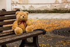 Ours de nounours dans la République Tchèque Image libre de droits