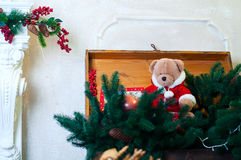 Ours de nounours de Noël dans des branches d'arbre Photographie stock