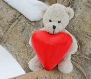 Ours de nounours et coeur rouge Image libre de droits