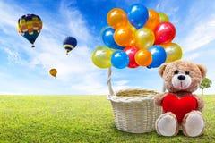 Ours de nounours et panier de ballon Image libre de droits