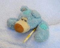 Ours de nounours malade Photos libres de droits