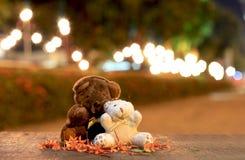 Ours de nounours mignon Photographie stock libre de droits