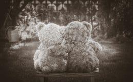 Ours de nounours mignons Photo libre de droits