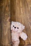 Ours de nounours mignons avec le vieux fond en bois Photo stock