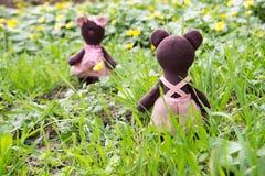Ours de nounours regardant en arrière sur la fille d'ours de nounours Photo libre de droits