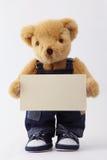 Ours de nounours retenant une carte vierge Photos libres de droits