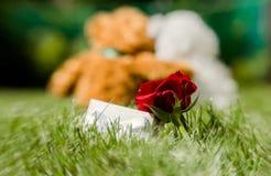 Ours de nounours romantiques Un couple dans l'amour une date Images libres de droits