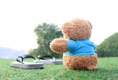 Ours de nounours se reposant sur l'herbe Concept au sujet de l'amour et de l'attente Photographie stock
