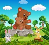 Ours et ours de bébé dans la forêt Photos stock