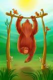 Ours faisant menton-UPS Photos libres de droits