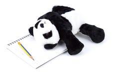 Ours panda avec l'activité d'humain quotidiennement sur le blanc d'isolement photos libres de droits