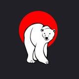 Ours polaire de wite Photo libre de droits