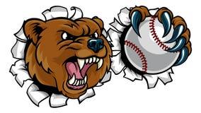 Ours tenant la boule de base-ball cassant le fond Image libre de droits