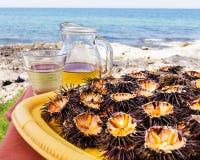 Oursins (ricci di mare) et vin Photos libres de droits