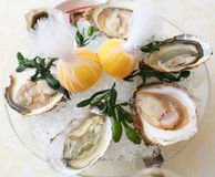 Ouster. Oysters with a lemon in ice in a transparent dish Stock Photo