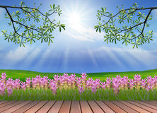 Out door scenery use for multipurpose background Royalty Free Stock Image