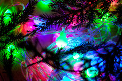 Out of focus colored lights and garlands of Christmas tree branc Royalty Free Stock Photo