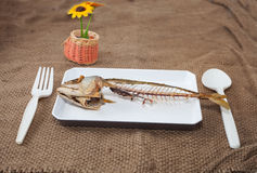 Out  of food Royalty Free Stock Photography