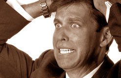Out of His Mind. Very Distraught Businessman pulling his Hair out Royalty Free Stock Photo
