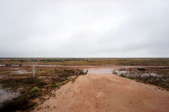 Out In The Nullarbor Stock Images