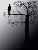 Out On A Limb Stock Photography