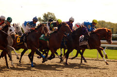 Out of the Starting Gate Royalty Free Stock Photography