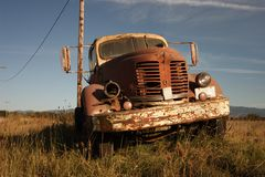 Out to Pasture Stock Photos