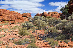 Outback Royalty Free Stock Images