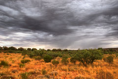 Outback. Scenery, Northern Territory, Australia royalty free stock photos