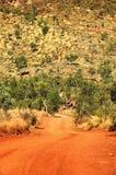 outback Fotografering för Bildbyråer