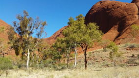 Outback Australia Landscape Red Desert Sand and Dry Arid Grasslands. The Outback is the desert region that comprises most of Australia's interior. The arid Red stock footage