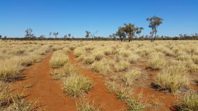 Outback Australia Landscape Red Desert Sand and Dry Arid Grasslands. The Outback is the desert region that comprises most of Australia's interior. The arid Red stock video