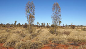 Outback, Australia Royalty Free Stock Image