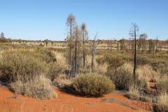 Outback, Australia Stock Photos