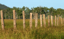 Outback Australian post and wire fence Stock Photos