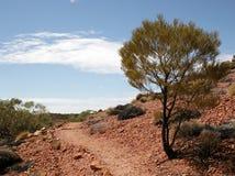 outback bana Arkivbilder