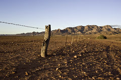 Outback Fence Royalty Free Stock Image