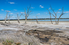 Outback Lagoon. Outback South Australia , Yacto Lagoon dries up in the searing Summer temperatures Stock Images