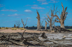 Outback Lagoon. Outback South Australia , Yacto Lagoon dries up in the searing Summer temperatures Stock Image
