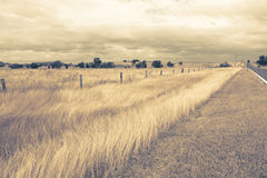 Outback Landscape Stock Images