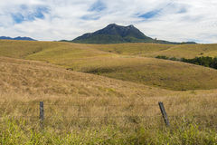 Outback mountain and field in the Scenic Rim, Queensland. Royalty Free Stock Photo