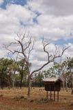 outback postbox Royaltyfri Fotografi