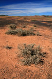 Outback - The Red Centre, Australia Royalty Free Stock Photos